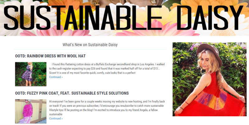 Sustainable Daisy Blog